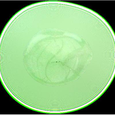 prehniet - uitleg edelsteen